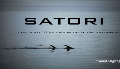 fly fishing for permit documentary film satori official poster
