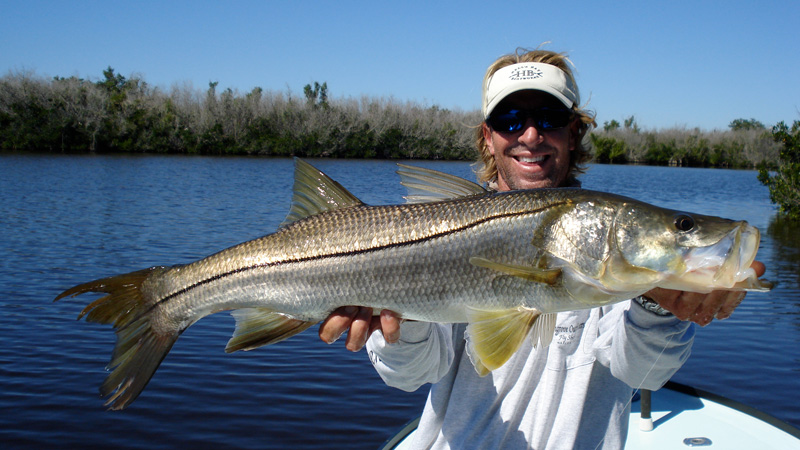 Captain Jeff Legutki holds a beautiful everglades snook he caught on fly