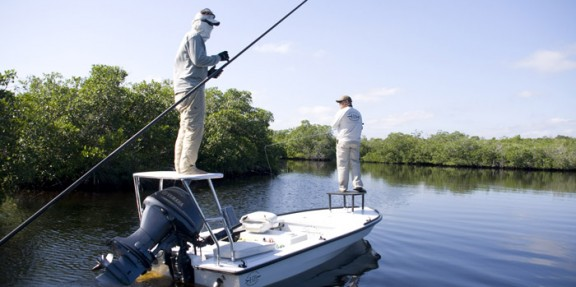 Fly fishing for snook and tarpon in the Everglades.