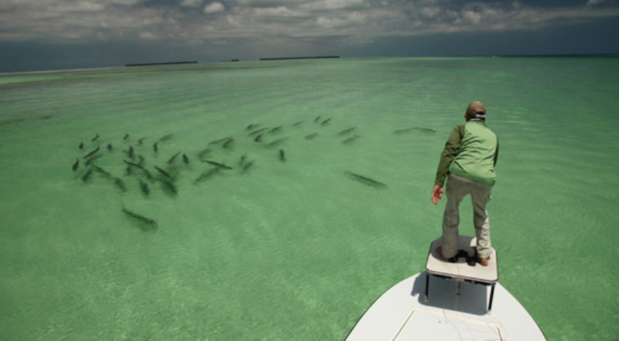 Fly fishing for tarpon in key west and florida keys for Key west fly fishing