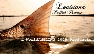 Backlit tail of a Louisiana redfish is the picture for the Louisiana preview video.