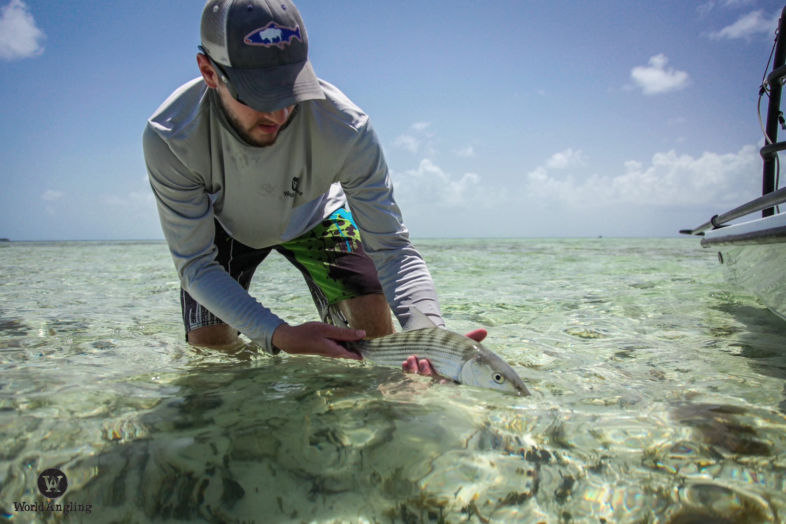about to realease a beautiful bonefish caught on fly off Key west